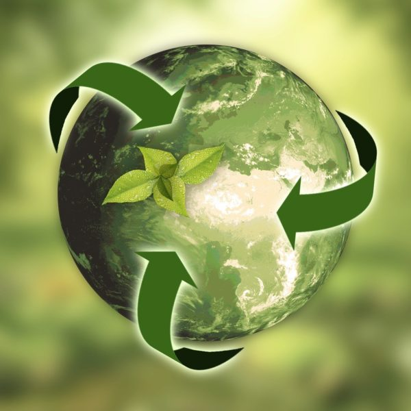 Eurodividers offers environment-friendly packaging solutions